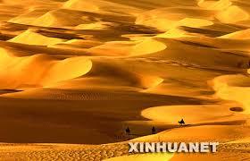 http://news.xinhuanet.com/photo/2007-10/07/content_6839007.htm